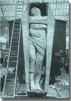 Fossilized Irish Giant Giant Footprints